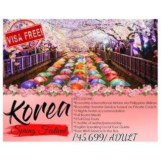 4D3N Korea Spring Festival (Seoul - Gangwon - Gyeonggi)