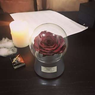 Everlasting rose crystal ball (real flower)