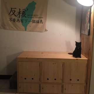 貓砂箱 二手 Myzoo動物緣