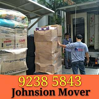 Professional experience house moving/delivery service