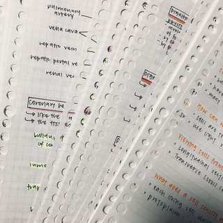 biology (combined) notes