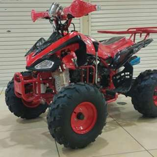 atv 110cc ring 8