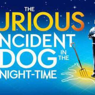 WTB - Curious Incident of The Dog in the Night time