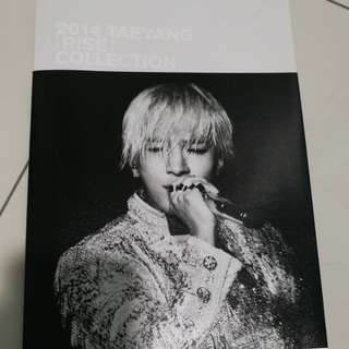 Taeyang Photobook of Rise Concert 2014