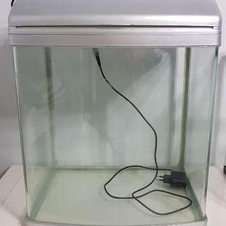 Colorful fish tank