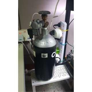 6 months old CO2 Setup