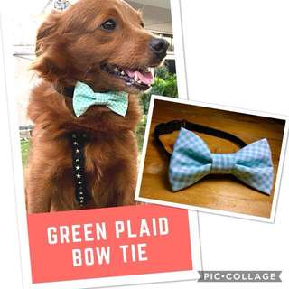 ⭐️Pet Collar with Bow Tie⭐️
