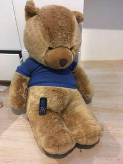 Huge teddy bear from bear cuddler