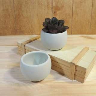 Succulent Concrete Small Pot