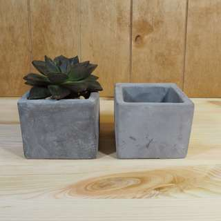 Succulent Pot Medium Concrete