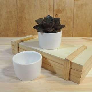 Succulent Pot Small Cup