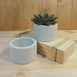 Succulent Pot Concrete (White)