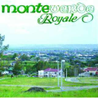 Affordable Lot For Sale In Monte Verde Royal Taytay