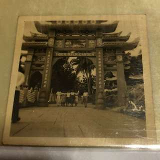 Vintage Old Photo - Very old black & white photo showing Tiger Balm Garden (6 X 6 cm)