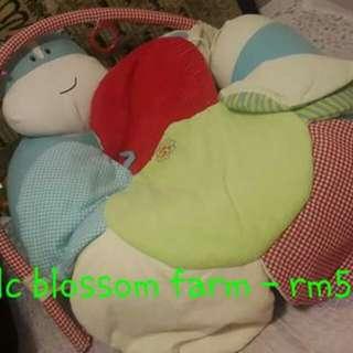 ELC BLOSSOM FARM