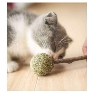 [Last 1] 💯 Natural Catnip 🍭
