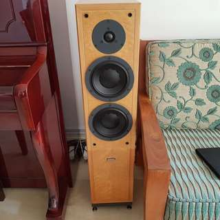 FS DYNAUDIO CONTOUR 1.8MKII Birdseye Maple color