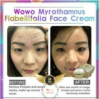 Wowo M. Flabellifolia Repair Face Cream