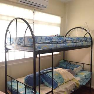 Tampines Share Room (BLK 493E)