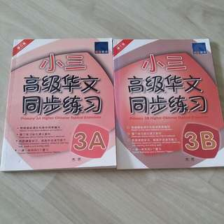 Primary 3 Higher Chinese Topical Exercises