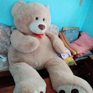 SNR Life Sized Teddy Bear