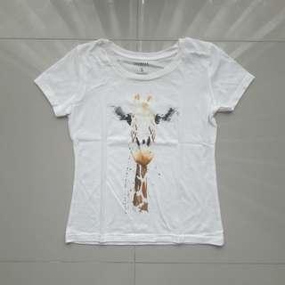 Colorbox t-shirt / kaos colorbox