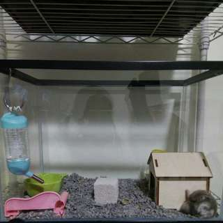 Fish Tank,hamster accesories and more