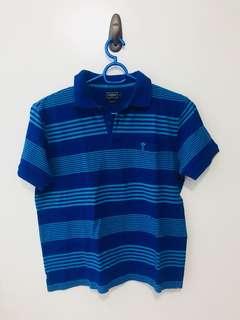Arrow blue stripes poloshirt