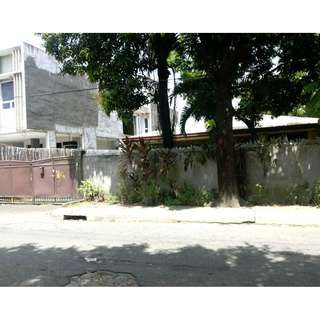 For Sale Old House in Don Victorino Don Antonio Heights Quezon City