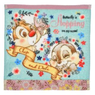 Japan Disneystore Disney Store Chip & Dale BLOOMING GARDEN Mini Towel