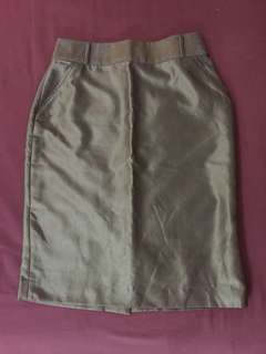 Corporate Skirt (Elan)