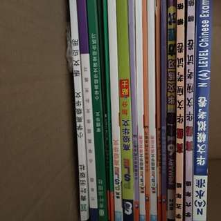 Tien Hsieh notes and materials + Higher Chinese Assessment books