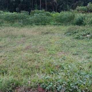 Tanah kavling daerah ampeldento malang dijual 2 kavling sekaligus