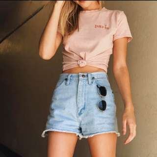 BNWT Paris Rose Embroidery Pink Crop Top Brandy Melville