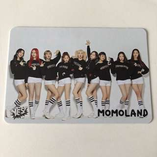 Momoland Yes!Card 31期