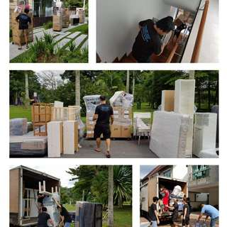 TMS Professional Moving Services by Local Movers*97101153*