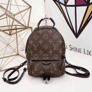🆕 LV Mini Backpack