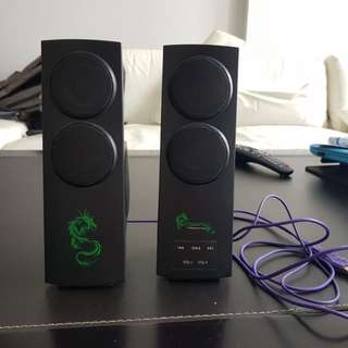 Dragon war gaming speaker