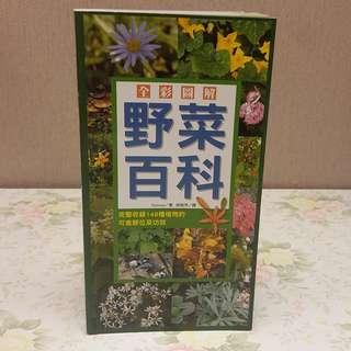 特價出售 兒童讀物 solmoe著 全彩圖解 野菜百科