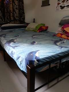 Double sized bed with metal frame