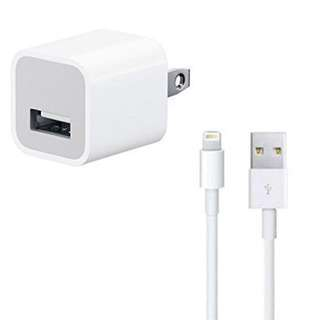 Authentic iPhone Charger