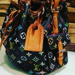 Louis Vuitton Muticolor Petit Neo