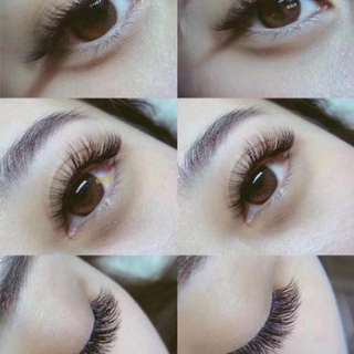 Eyelash package @ $200 for 3 sessions