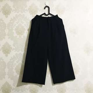 Zara Cullote pants