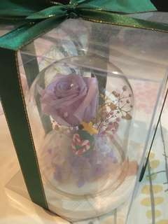 真空保鮮花Florist