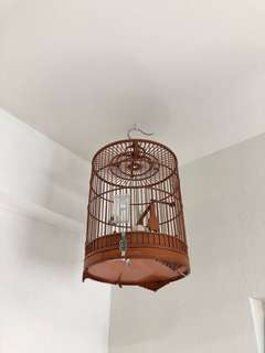 Fin cage