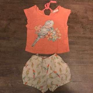 Gingersnaps Shirt and Shorts Set