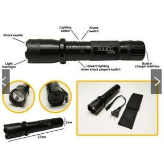 Flashlight and Stun Gun