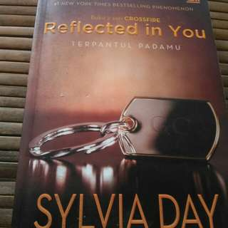 Novel Reflected in You