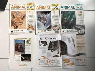 Animal World Series by Marshall Cavendish